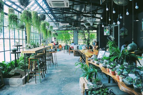 cà phê sân vườn