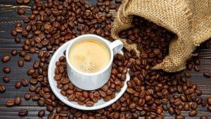 có kiến thức về cà phê