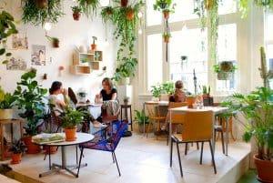 quán cà phê cây xanh