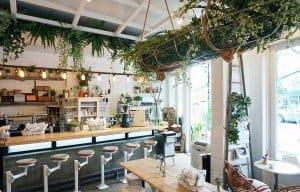 cây xanh tại quầy cà phê
