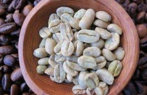 hạt cà phê xanh