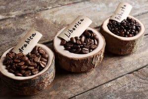 cà phê Liberica