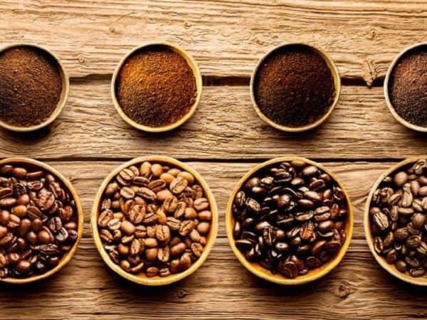 Các giống cà phê – Các loại cafe ngon nhất hiện nay