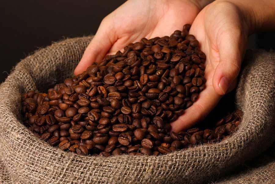 Hương vị cà phê Robusta